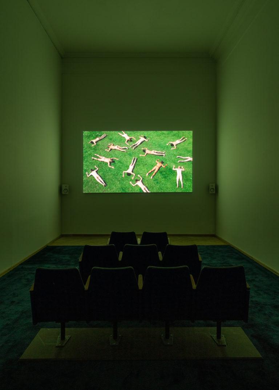 biograf. nøgne menensker der ligger på græs.